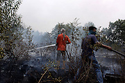 INDONESIA, Palembang : 16 October 2015 Indonesian fire fighters extinguish fires on peatland and fields in the Ogan Ilir district, South Sumatra, Indonesia. Forest fires in Sumatra and Borneo have caused widespread haze in Southeast Asia. Pic by Hairul Akbar / Story Picture Agency