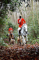 Fox Hunting.Matingley, Oxfordshire, England, Vale of Aylesbury with Garth and south hunt, joint master drawing hounds behind.
