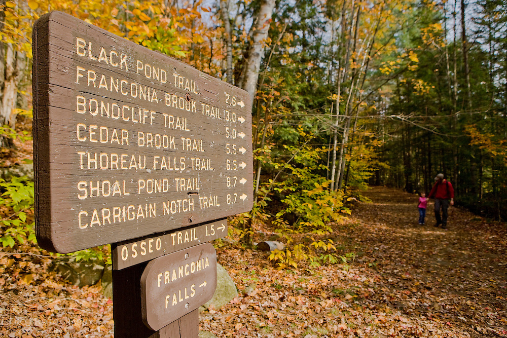 The Lincoln Woods Trail in New Hampshire's White Mountains.