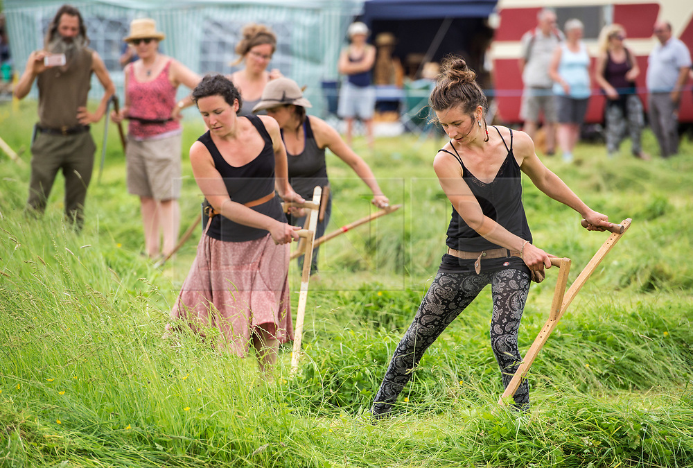 © Licensed to London News Pictures. 10/06/2018. Muchelney, Somerset, UK. West Country Scythe Championships, at the Green Scythe Fair, held at  Thorney Lakes, Muchelney. The Green Scythe Fair includes the celebrated West Country Scythe Championship, known far and wide for the feats of haymaking by international scythesmen and women. The competition for individuals is based on mowing a 5m x 5m square of grass as quickly as possible, and penalty times are added for an uneven cut or missed areas. Photo credit: Simon Chapman/LNP