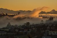 Foggy Morning Sunrise, Queen Anne & Interbay