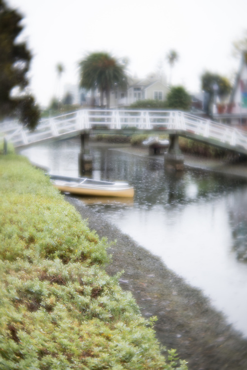 Rainy Day at the Venice Canals. Venice, CA, 1.8.17.