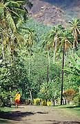 Pfad führt durch Dschungel, Nuka Hiva, Französisch Polynesien * Path leading through jungle, Nuka Hiva, French Polynesia