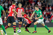 Southampton midfielder Sam McQueen (12) battles with Brighton and Hove Albion midfielder Dale Stephens (6)  during the Premier League match between Southampton and Brighton and Hove Albion at the St Mary's Stadium, Southampton, England on 17 September 2018.