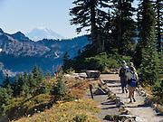 Mount Adams and Tatoosh Range seen from Mount Rainier National Park, Washington, USA