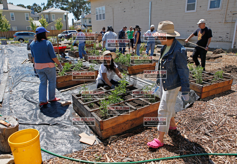 Volunteers work on the new Vallejo People's Garden on Mare Island in Vallejo, Calif.  The organization was just awarded a $25,000 grant to build a world class garden to benefit the entire Vallejo community.