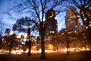 blurry trees central park New York with very bright city and street lights