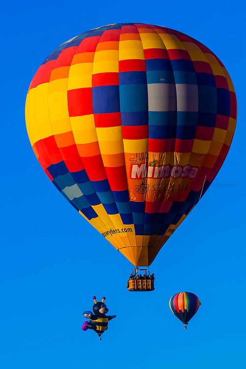 Aerial view, hot air balloons flying during the Albuquerque International Balloon Fiesta, Albuquerque, New Mexico USA.