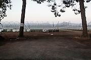 Campi agricoli nell'agropontino, Sabaudia (Latina), Giugno 2014.  Christian Mantuano / OneShot