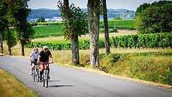 Tourists cycling past vineyards in the Dordogne, France in summer<br /> <br /> (c) Andrew Wilson | Edinburgh Elite media