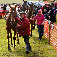 John Lynch and Salford Valley at the Dromoland Point to Point on Sunday.<br />