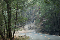 Fireman and loggers remove trees along Calistoga Rd near Santa Rosa, California, that were weakened due to the fires.