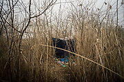 One of the many shelters where migrants are living in a make shift camp near Subotica. Police often tries to clear the camp and to move the migrants in governament camps. Subotica, Serbia. March 18th, 2017. Federico Scoppa/CAPTA