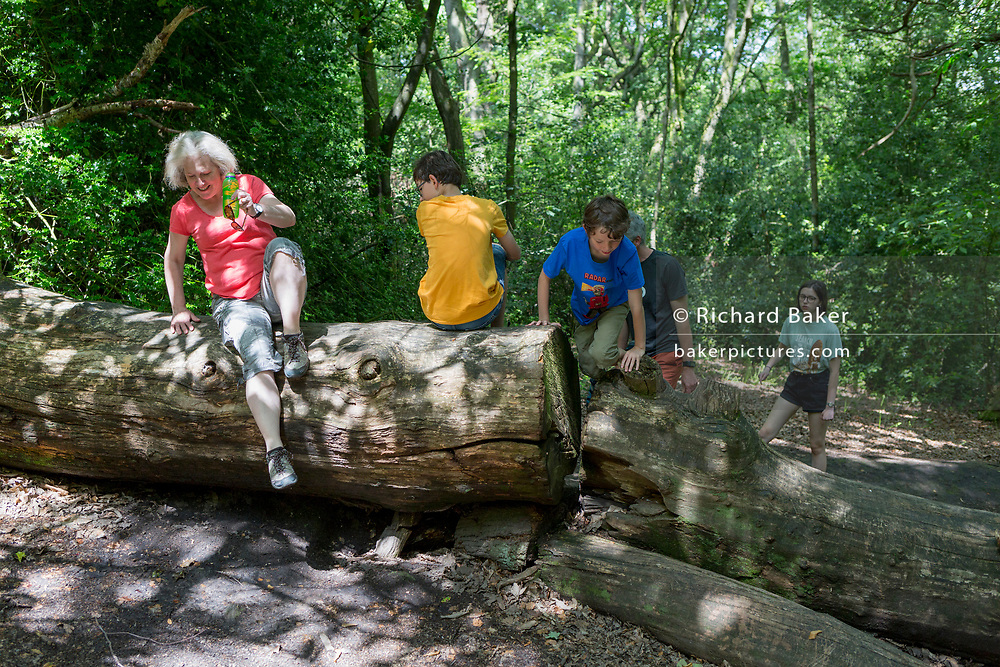 A family climb over a fallen tree trunk in Ecclesall Woods, on 29th June 2019, in Sheffield, England.