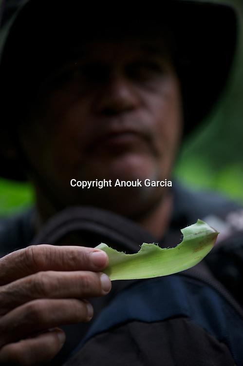 Enseignements de Nilson Mendes dans forêt primaire du Seringal Cacohoeira