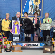 Poodle Club of America 04/20/2018