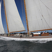 Eleonora J P Morgan Round the island Race 2015