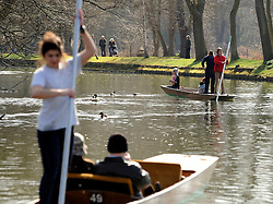 © Licensed to London News Pictures. 11/03/2012. Oxford, UK. Punts on the river. People enjoy the early morning sunshine on the River Cherwell in Oxford today 11 March 2012. Photo credit : Stephen SImpson/LNP