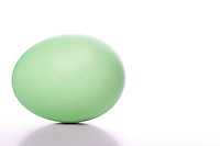 Green easter egg on white background