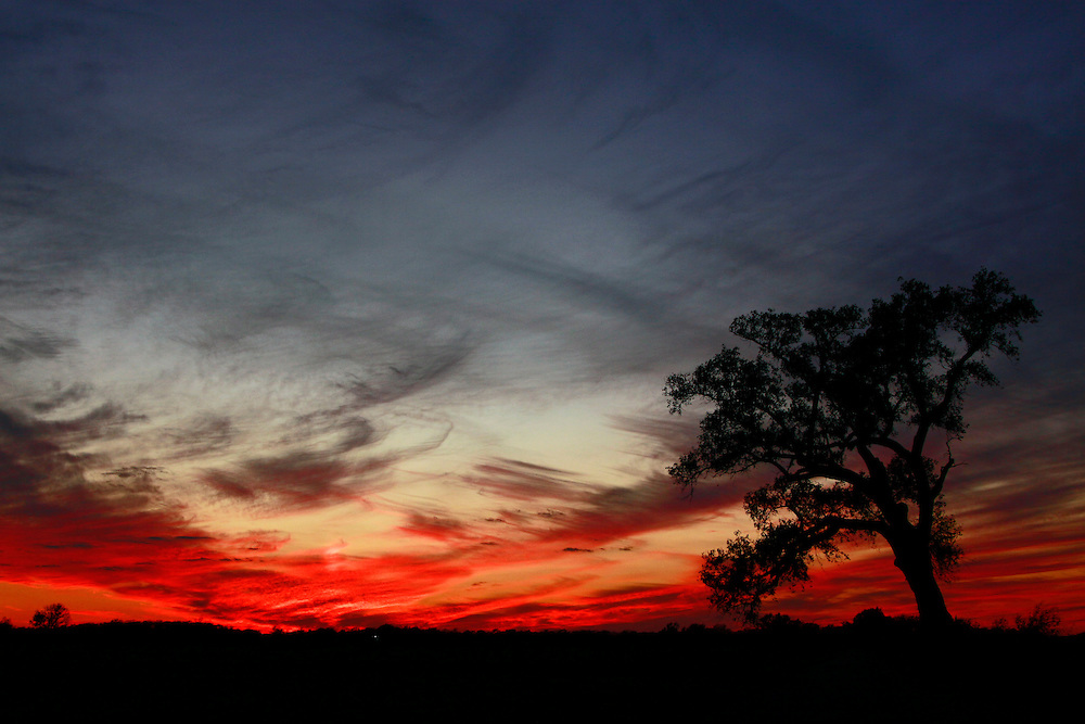 Published:<br /> Steve's Digicams Photo of the Day November 13, 2010<br /> Oklahoma Photographer