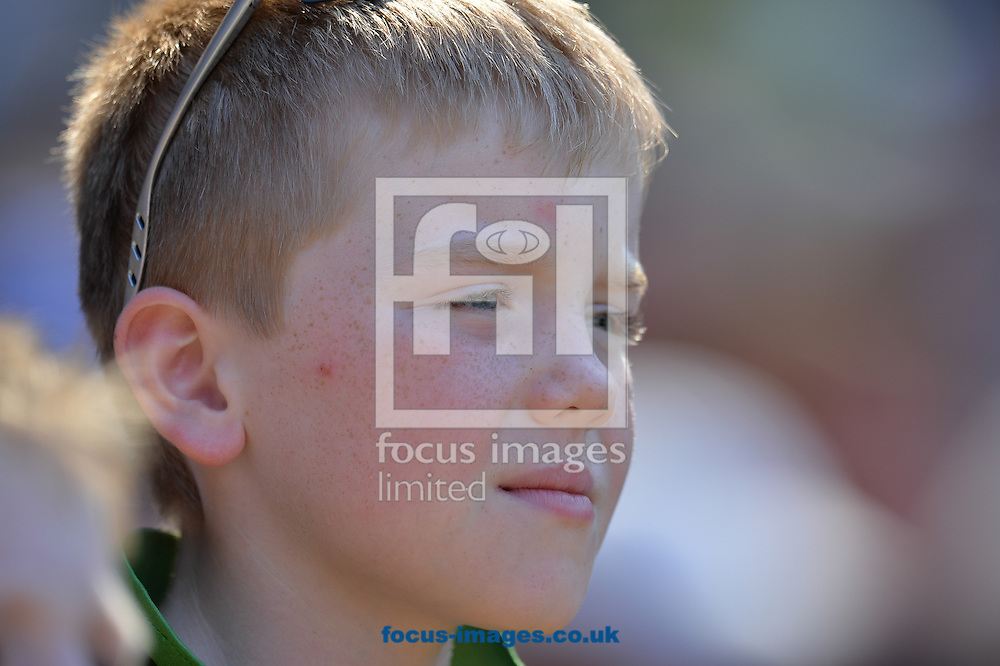 A fan looks on during the 2015 ICC Cricket World Cup match at Melbourne Cricket Ground, Melbourne<br /> Picture by Frank Khamees/Focus Images Ltd +61 431 119 134<br /> 14/02/2015