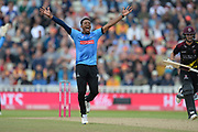 Chris Jordan of Sussex appealing for the wicket of Lewis Gregory during the Vitality T20 Finals Day semi final 2018 match between Sussex Sharks and Somerset County Cricket Club at Edgbaston, Birmingham, United Kingdom on 15 September 2018.
