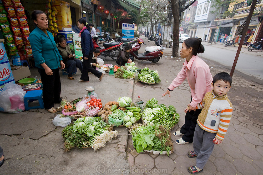 Rice farmer Nguyen Van Theo's wife selling vegetables on the streets of Hanoi. Rice farmer Nguyen Van Theo, age 51, of rural Tho Quang village, outside Hanoi, is a rice farmer with three children who lived hand-to-mouth until wife Vie Thi Phat, 53, moved to Hanoi with her sisters to sell vegetables on a street corner to support their families. Through the years she has managed to come home to the village only once every two months. (Theo Nguyen Van is featured in the book What I Eat: Around the World in 80 Diets.) MODEL RELEASED.