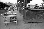 Vatra Dornei, 1993:  banchi del mercato - market<br /> &copy; Andrea Sabbadini