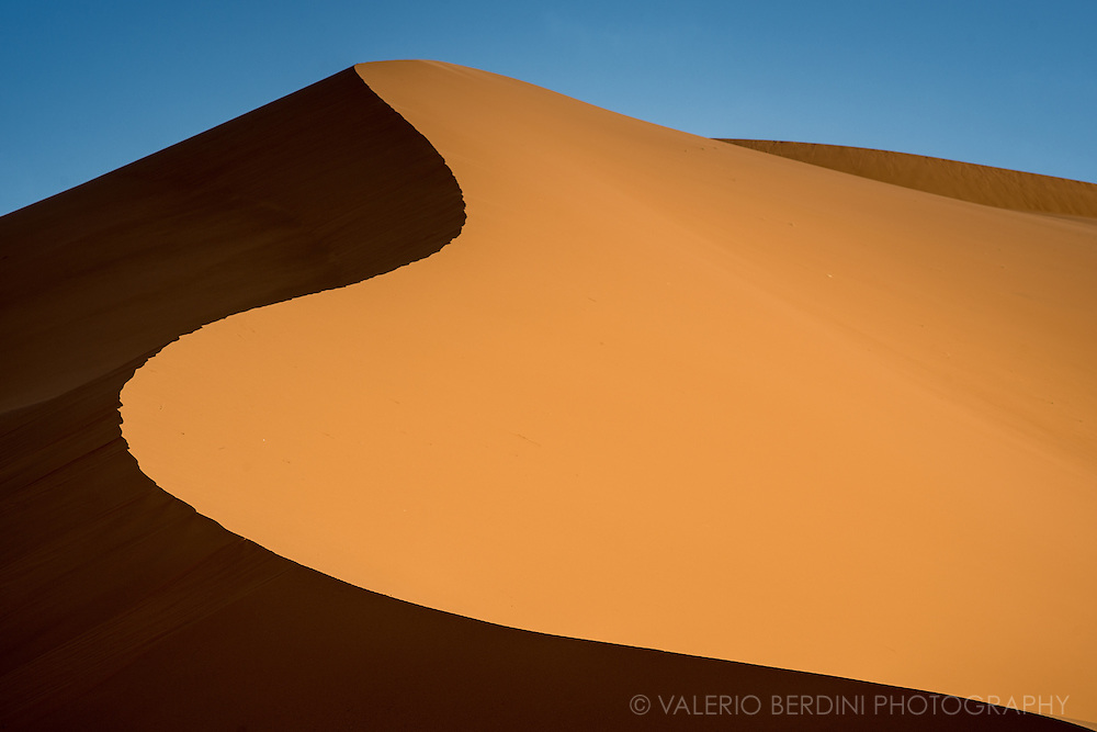 The sensual shape of a large Sahara sand dune in Morocco, lit by the sunrise light of a late spring morning. To access the highest dunes in the Erg Chebby desert, near Merzouga, it is necessary to take a camel excursion followed by a night in a tent camp.