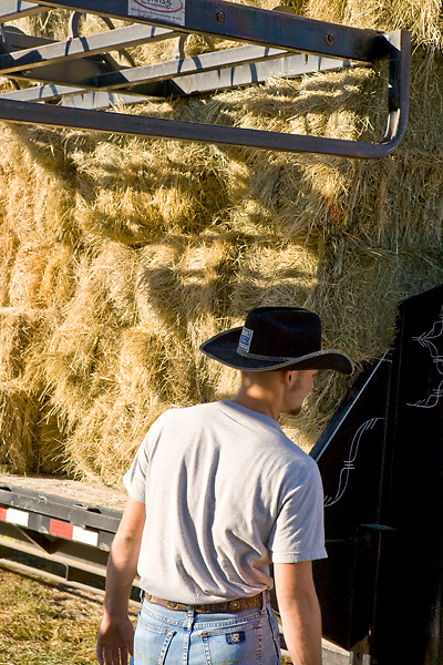 Stock photo of a man in a black cowboy hat standing beside a flatbed trailer filled with square bales of freshly cut hay