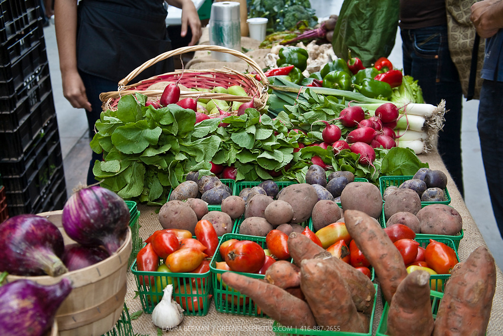 A variety of fresh produce at a farmers market