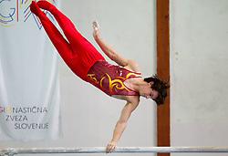 Ziga Potocnik during Slovenian Artistic Gymnastics National Chapionship 2011, on November 20, 2011 in GIB Arena, Ljubljana, Slovenia. (Photo By Vid Ponikvar / Sportida.com)