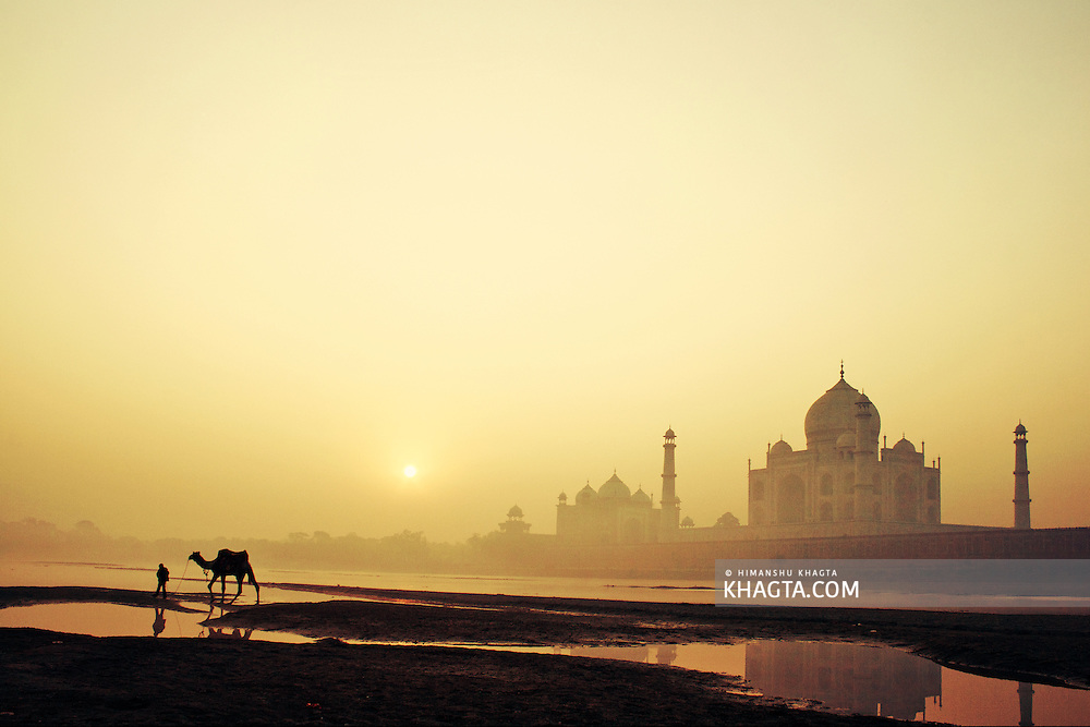 A Camel being taken on a walk behind Taj Mahal, Agra, India