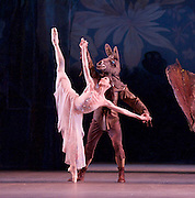 A Midsummer Night's Dream <br />