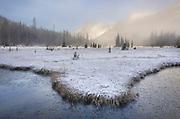 Autumn snow and fogg at Washington Pass meadows, North Cascades