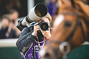 November 1-3, 2018: Breeders' Cup Horse Racing World Championships. Photographer Alex Evers