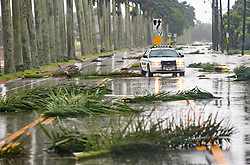 September 10, 2017 - Pahokee , Florida, U.S. - A PBSO deputy navigates through downed palm fronds on Bacom Point Road as winds from Hurricane Irma hit the county Sunday morning.  (Credit Image: © Lannis Waters/The Palm Beach Post via ZUMA Wire)