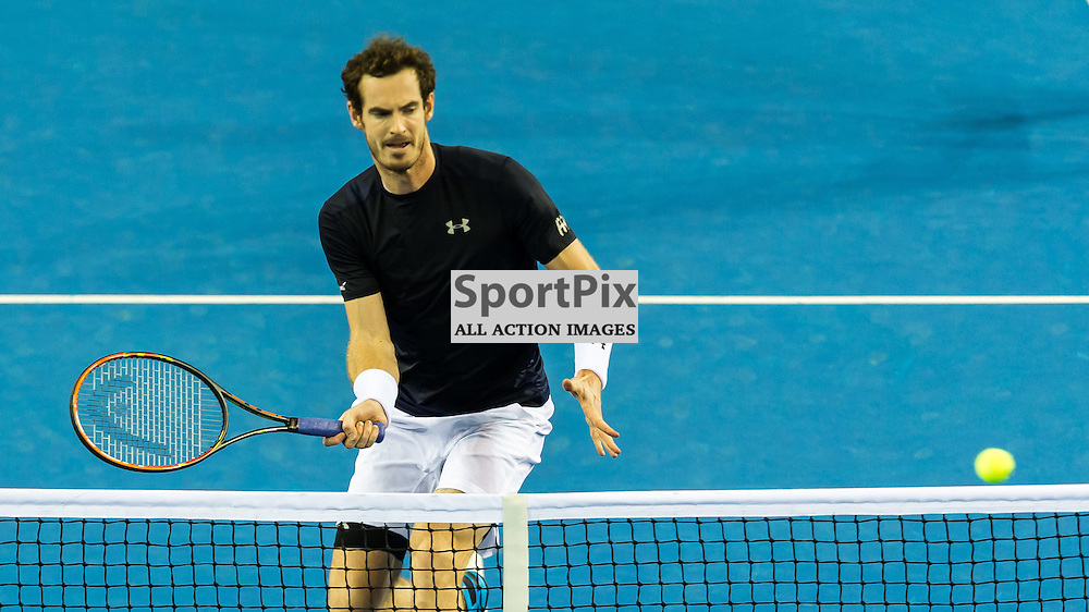 Andy Murray in action during the Davis Cup Semi-final between Great Britian and Australia (c) ROSS EAGLESHAM   Sportpix.co.uk
