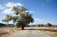Road to Mission San Antonio de Padua, Monterey County, California
