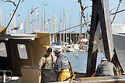 Frankrijk,Sete, 20-9-2008Vissers sorteren gevangen vis uit de middellandse zee op het dek van een vissersboot.Fishermen sort caught fish from the Mediterranean sea on the deck of a fishing boat.Foto: Flip Franssen/Hollandse Hoogte