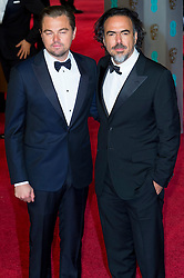 © Licensed to London News Pictures. 14/02/2016. London, UK. LEONARDO DICAPRIO and ALEJANDRO GONZALES INARRITU arrive on the red carpet at the EE British Academy Film Awards 2016 Photo credit: Ray Tang/LNP