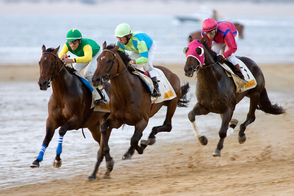 Thoroughbred horses compete at sea shore with green horizon of ?Doñana National Park? and the whole seafront in Sanlucar de Barrameda, Cadiz, Spain. The races date back to the 19th century.