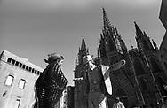 Barcelona, 2001: artista di strada, Cattedrale - street artist, Cathedral<br /> &copy; Andrea Sabbadini