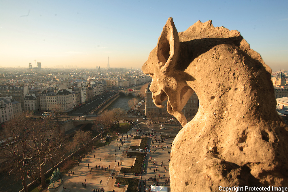 Paris and the Seine, as seen from the towers of Notre Dame Cathedral