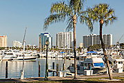View of downtown Sarasota Florida and Bayfront Park Marina.