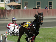 Goshen, NY A horse and driver round a turn during a harness race at Goshen's Historic Track on June 7, 2008.