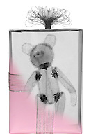 Blended x-ray image of a teddy bear gift by Jim Wehtje, specialist in x-ray art and design images.