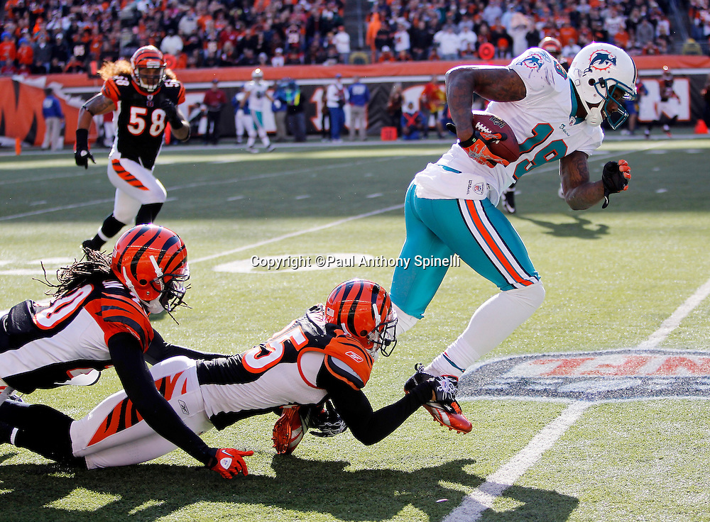 Miami Dolphins wide receiver Brandon Marshall (15) catches a pass and gets tackled by Cincinnati Bengals cornerback Morgan Trent (25) during the NFL week 8 football game against the Cincinnati Bengals on Sunday, October 31, 2010 in Cincinnati, Ohio. The Dolphins won the game 22-14. (©Paul Anthony Spinelli)