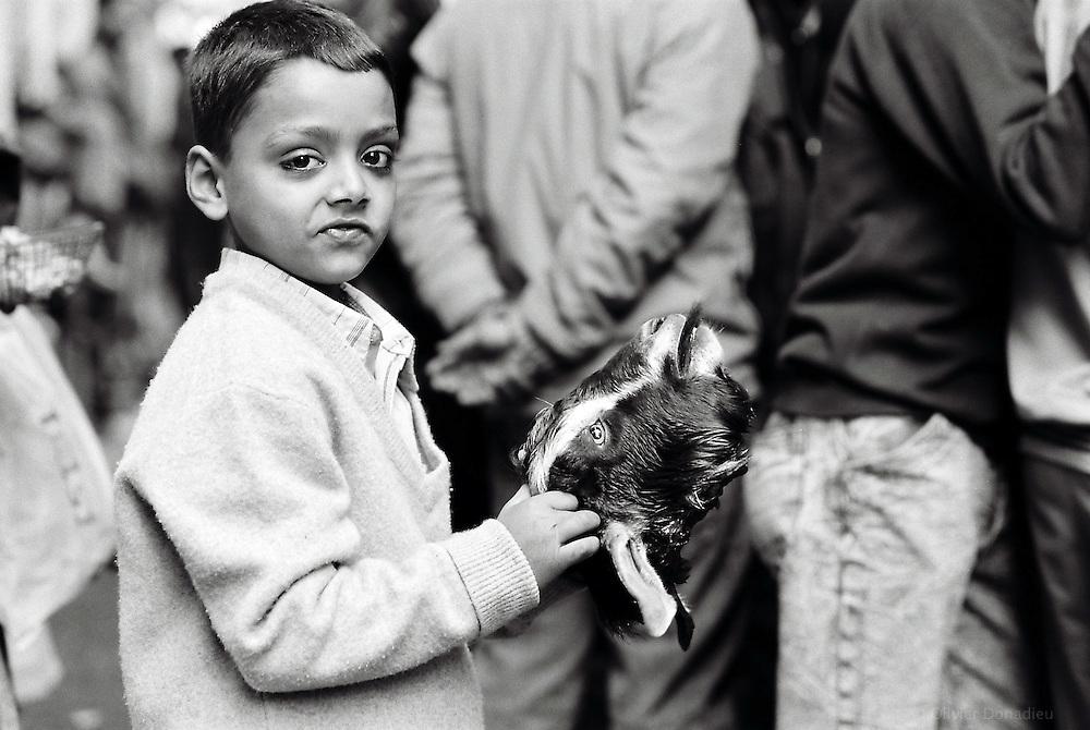 Tous les samedis les népalais se rendent en famille au temple de Dakshin Kali pour sacrifier un animal (Chèvre, Bouc ou Coq) en l'honneur de la déesse Kali. Ils organisent ensuite un grand pique-nique! Dakshin Kali, Népal. 2008