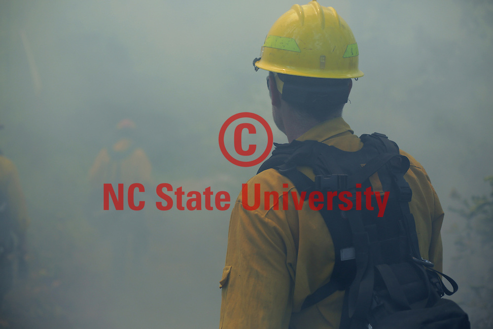 CNR Student walks through the smoke in a control fire burn in NC State's Hill Forest